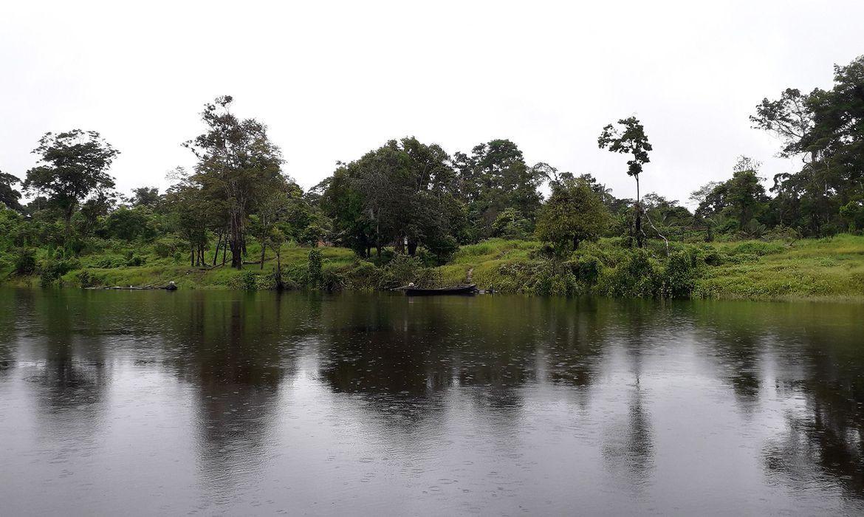 Este é o primeiro estudo em larga escala utilizando microrganismos cultiváveis e não cultiváveis presentes nos sedimentos da Bacia Amazônica