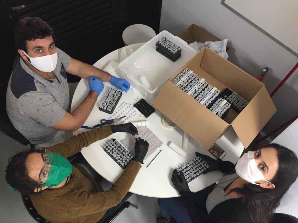 Pesquisadores organizam as centenas de amostras com as quais trabalharam na pesquisa