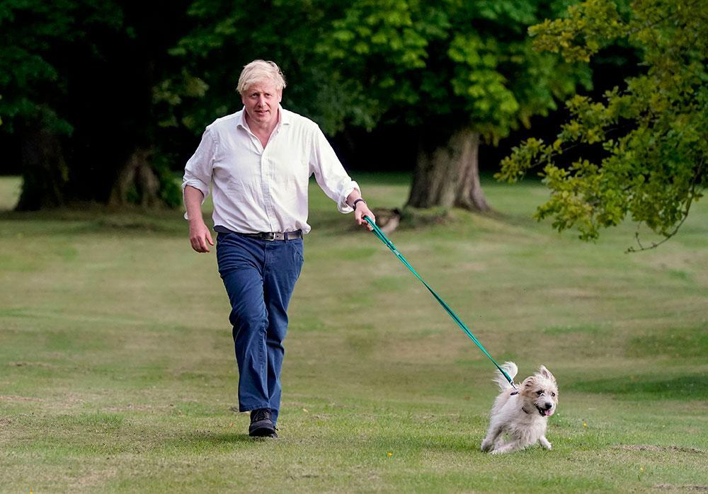 Primeiro-ministro Boris Johnson leva seu cão Dilyn para passear nos terrenos de Damas, enquanto incentiva as pessoas a se exercitarem para uma saúde melhor, em 26 de julho