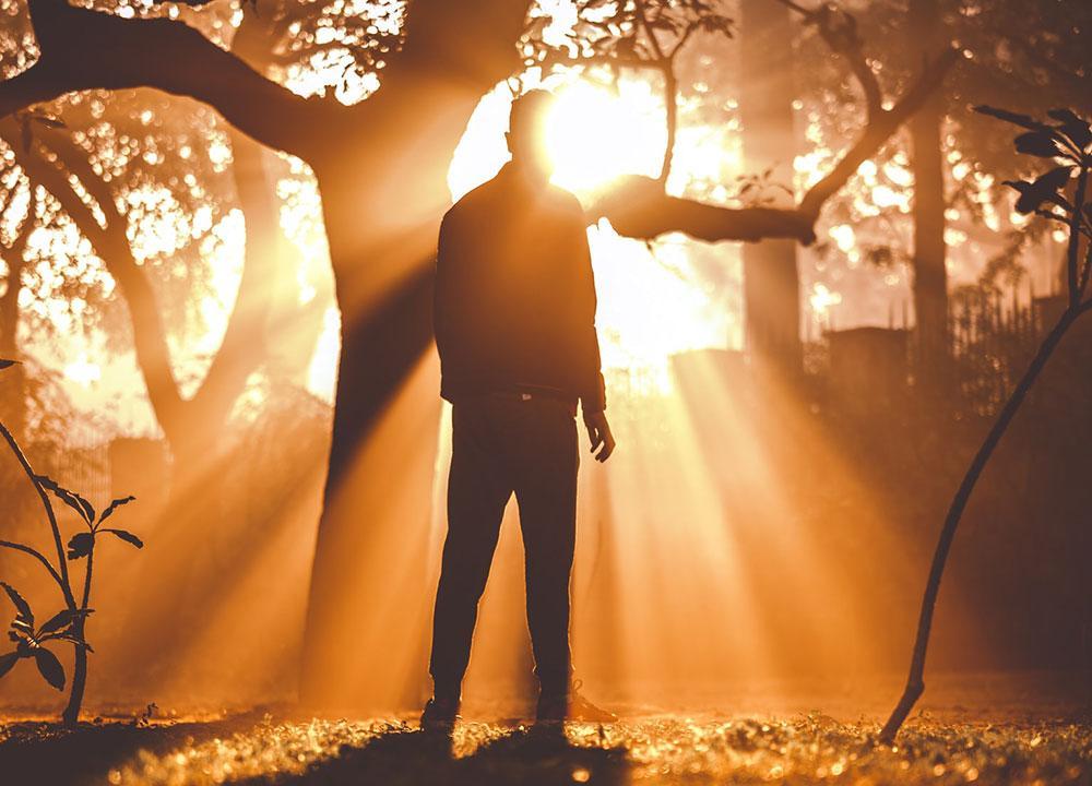 Quando se lança luz sobre tudo, ocorre o efeito paradoxal no qual o excesso de visibilidade gera invisibilidade