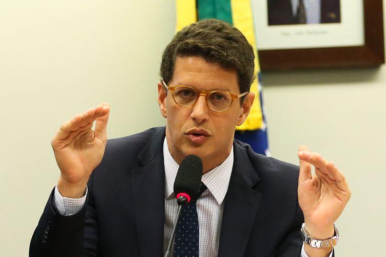 O ministro Ricardo Salles disse que a estrutura havia sido pensada durante a transição