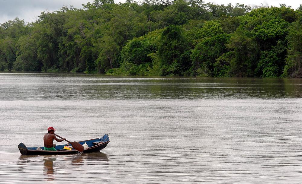 Itaú Unibanco, Bradesco e Santander anunciam conselho consultivo da Amazônia e selecionam seus sete integrantes