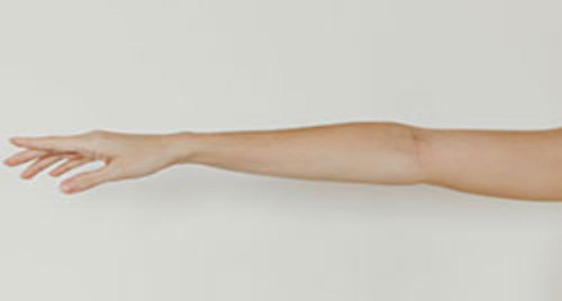 Num mundo de 'sábios', nenhuma pessoa dá o braço a torcer (Unsplash/Lívia Rocha)