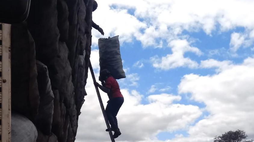 Os carvoeiros carregavam sacos de 40 kg de carvão por uma escada sem segurança