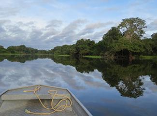 O VI Congresso propõe debates sobre assuntos ambientais e principalmente questões relacionadas à Pan-Amazônia. (Pixabay)