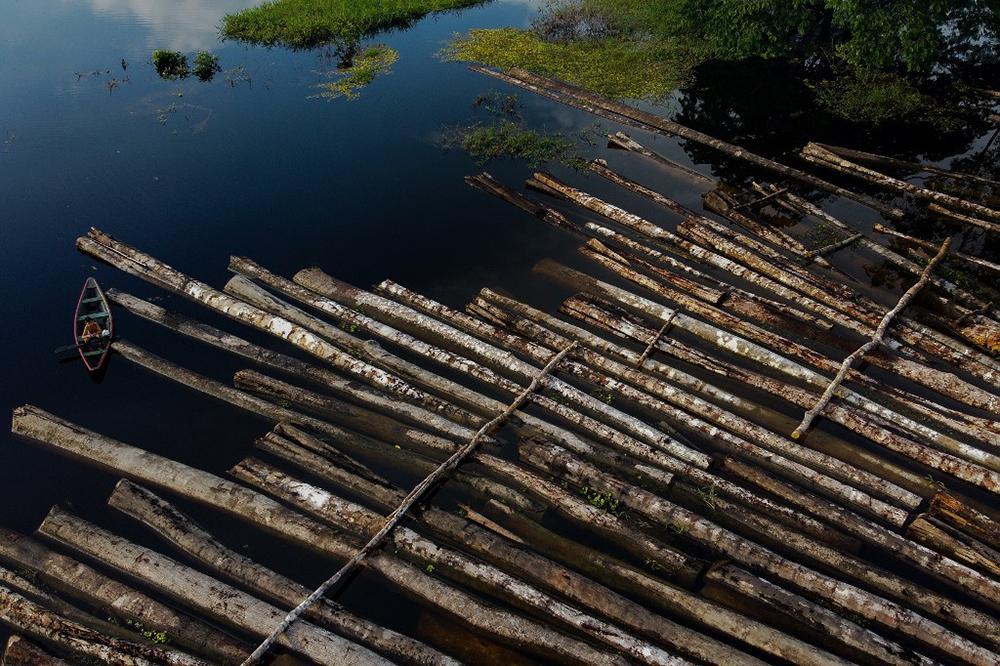 Desde o ano passado, quando o Brasil registrou volumes recordes de desmatamento, o governo passou a ser fortemente pressionado, inclusive pelo agronegócio, para tomar medidas efetivas de combate aos crimes ambientais