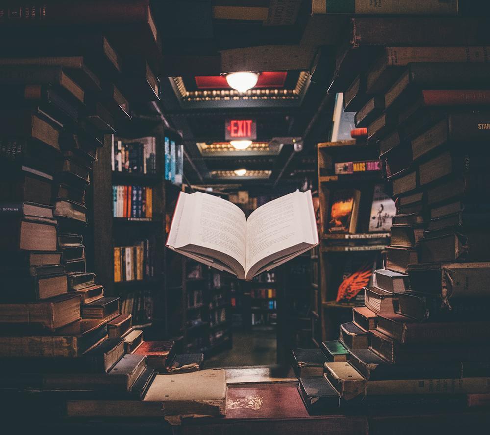 Os livros não acabados dentro da gente formam uma biblioteca interna intensa que só nós mesmos conhecemos