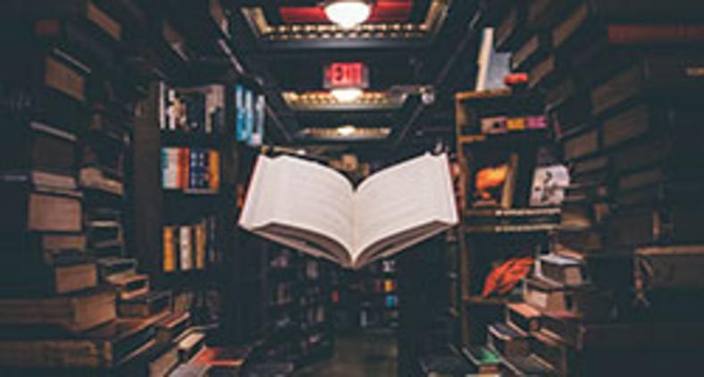 Os livros não acabados dentro da gente formam uma biblioteca interna intensa que só nós mesmos conhecemos (Unsplash/Jaredd Craig)