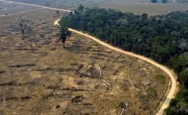 O desmatamento atingiu um nível excepcional em 2019 (9.178 quilômetros quadrados) no Brasil, primeiro ano do mandato do presidente Jair Bolsonaro, que é muito criticado por sua política ambiental (Carlos Fabal/AFP)