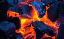 Cerca de 80% das 125 indústrias que usam carvão vegetal no país estão em Minas (Myriam Zilles / Pixabay)