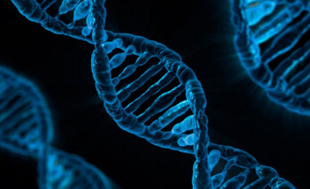 Estudo revela que população brasileira é pouco representada em bancos de dados genéticos no mundo