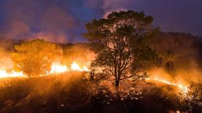 98% das queimadas no bioma são oriundas de ações humanas (Iberê Périssé / Projeto Solos)