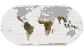 Mapa global mostrando a área que será monitorada pela Iniciativa Internacional de Clima e Florestas da Noruega (NICFI) (Planet Lab Inc.)
