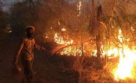Brigadistas lutam contra o fogo na Serra do Amolar, no Pantanal (André Zumak/Instituto Homem Pantaneiro)