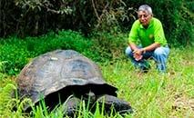 Foto divulgada em 21 de outubro de 2015 pelo Parque Nacional Galápagos mostra uma tartaruga 'Chelonoidis donfaustoi' (HO/AFP)