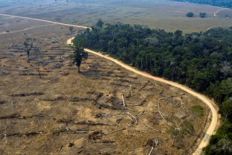 Área desmatada em Porto Velho, em 24 de agosto de 2019