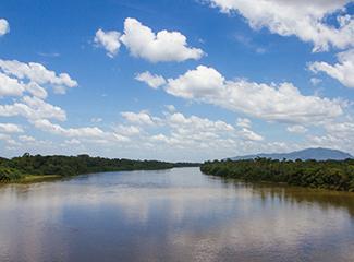 O Congresso propõe debates sobre questões relacionadas à Pan-Amazônia. (Pixabay)