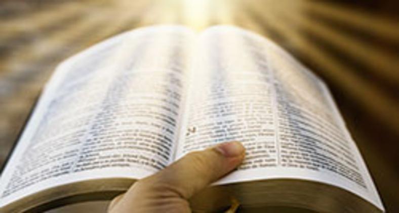 Que Deus nos dê a inspiração de São Jerônimo, ao acolher a revelação divina, no que diz respeito à Palavra de Deus (Unsplash/Oscar Ivan Esquivel Arteaga)