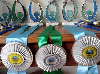 Cerimônia de premiação do Movimento Ecos 2020. (Necom Dom Helder e EMGE)