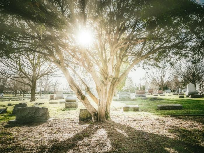 Fomos criados para a eternidade
