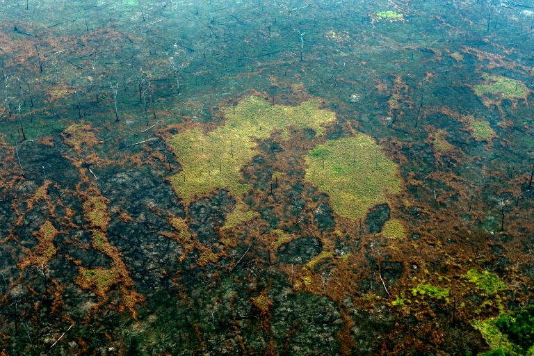 Vista área de zonas queimadas da Amazônia, perto de Boca do Acre, estado do Amazonas, Brasil, em 24 de agosto de 2019