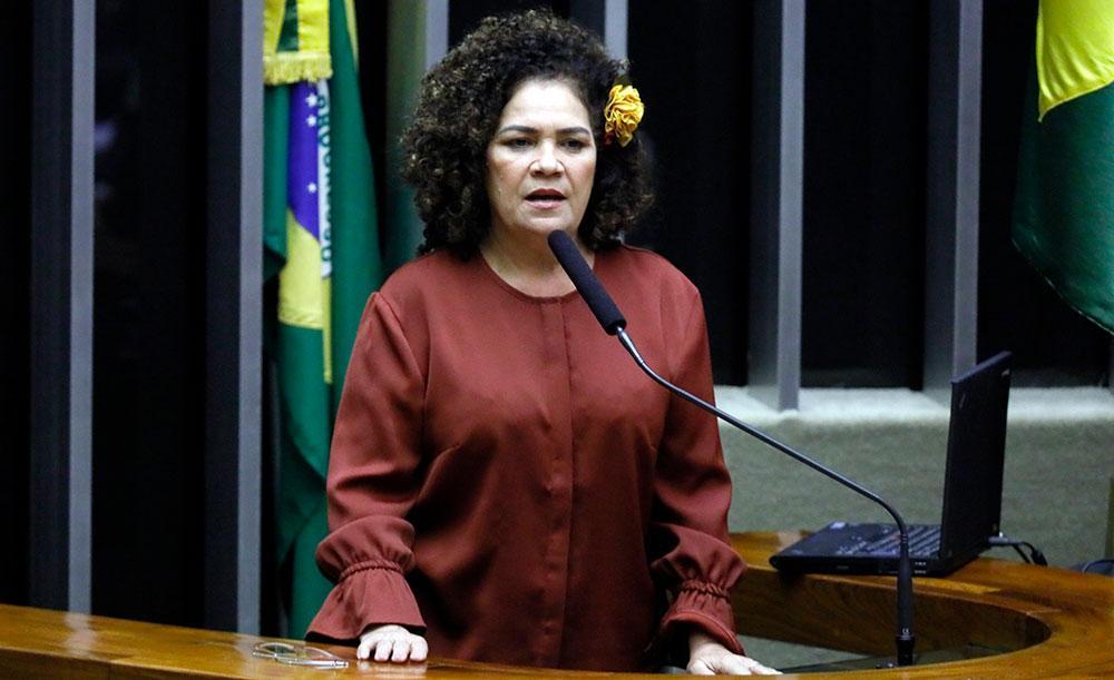 A líder da bancada do PCdoB na Câmara, a deputada Perpétua Almeida (AC)