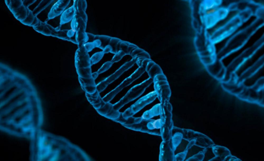 Uma reação química pode ter entrelaçado moléculas de DNA com o de RNA