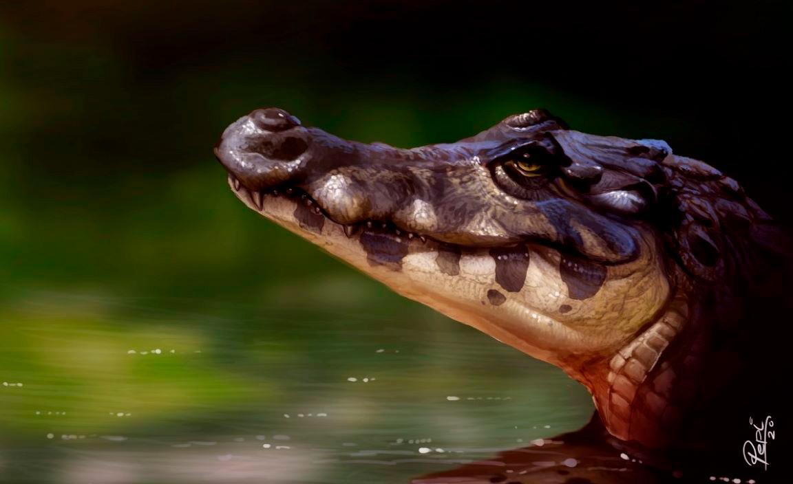 Paleoarte do recém-descoberto 'Melanosuchus latrubessei' durante o dia