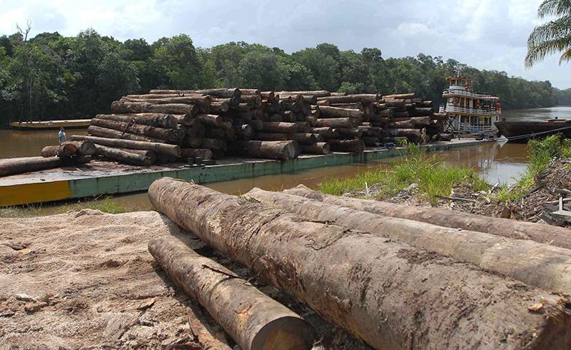 O sistema Deter não é a fonte oficial de desmatamento, mas alerta sobre onde o problema está acontecendo