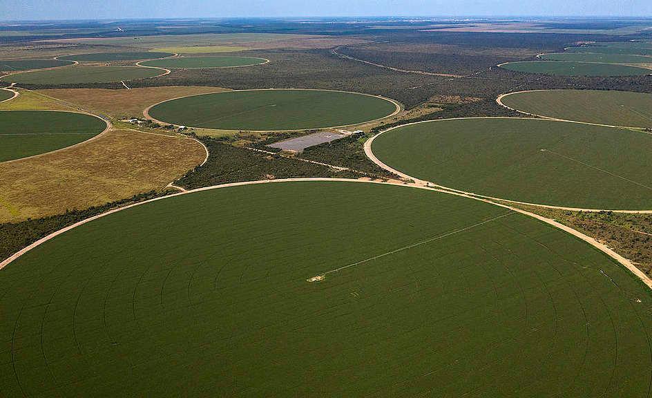 Pivôs de irrigação retiram água do subsolo para manter plantações de soja no Matopiba, na Bahia