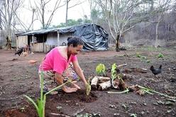 Suzana Cássia de Moura decidiu replantar o jardim após incêndio ter destruído parte do Acampamento Boa Esperança, em Novo Mundo (MT) (Álvaro Rezende)