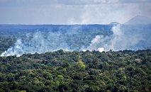 Vista aérea de incêndio em floresta amazônica em Oiapoque, Amapá (AFP)