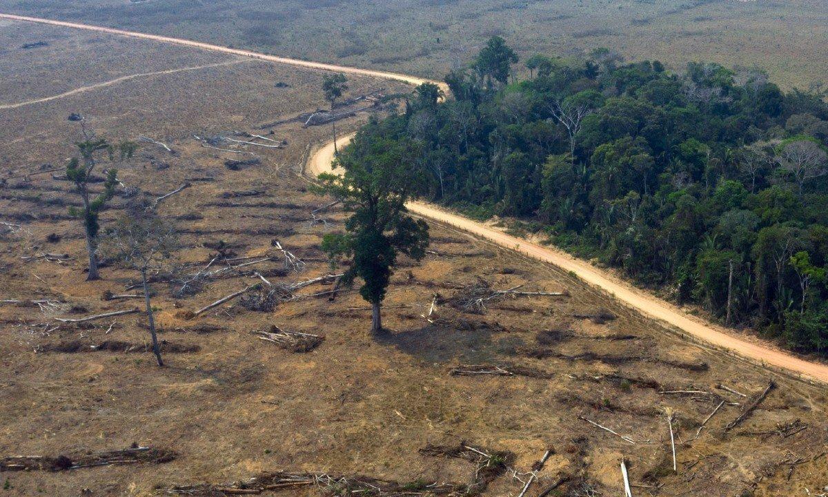 Parte da Floresta Amazônica desmatada