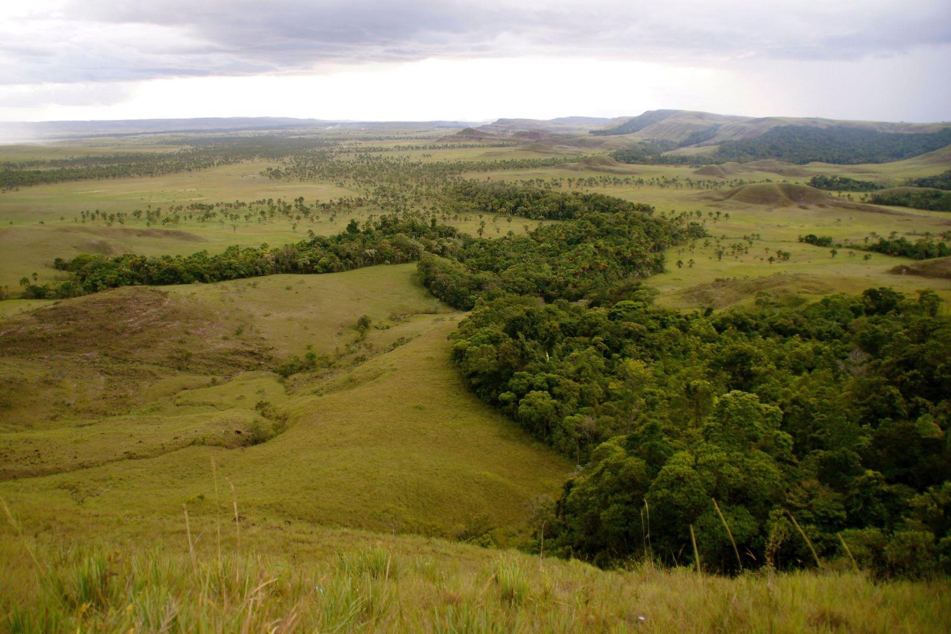 Cerca de 34% das áreas de Roraima ainda não estão destinadas ou não possuem informação de destinação