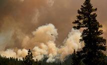 Incêndio Dixie perto de Susanville, na Califórnia: dados alarmantes (Patrick T. Fallon/AFP)