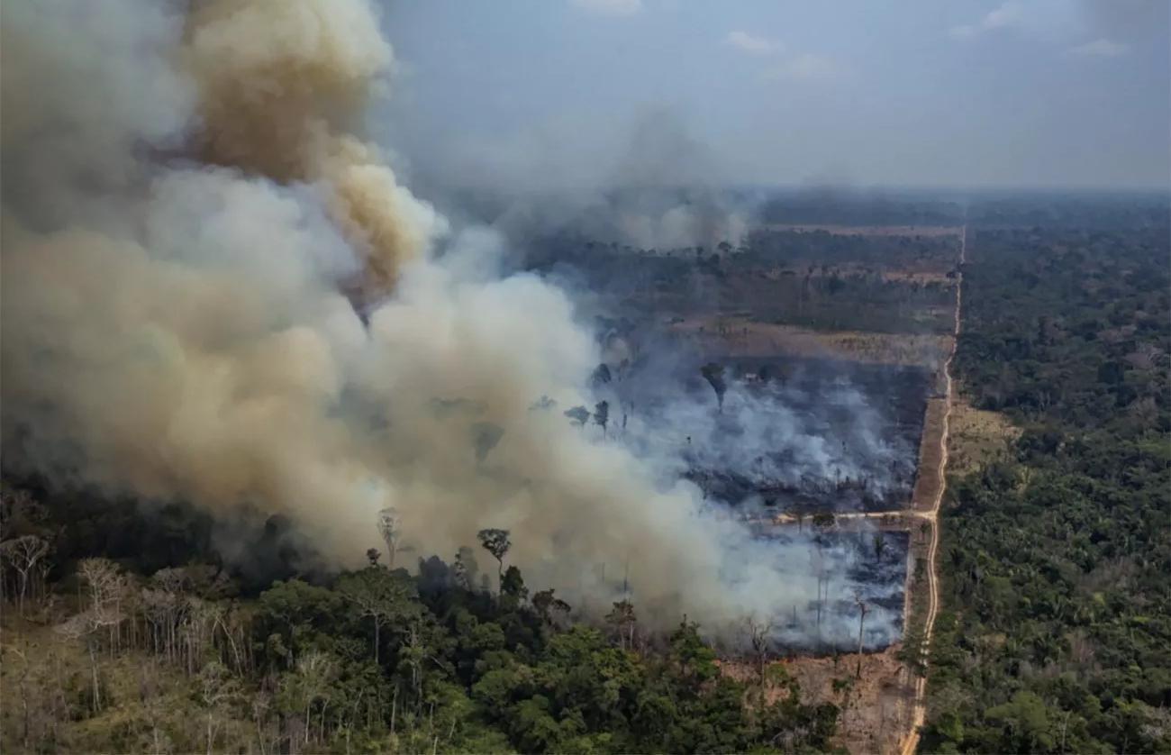 O descolamento entre o discurso e a prática dos congressistas brasileiros sobre a agenda ambiental foi medido por estudo