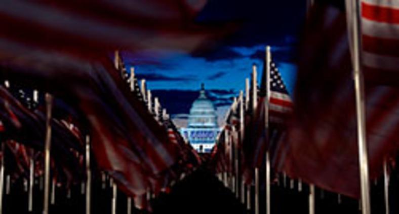 Bandeiras americanas decoram o 'Field of Flags' no National Mall perto do Capitólio dos EUA no início da manhã antes da posse do presidente eleito dos EUA, Joe Biden, em 20 de janeiro de 2021 em Washington, DC (Stephanie Keith/AFP)
