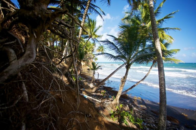 Praia em Guadalupe, em 23 de dezembro de 2020
