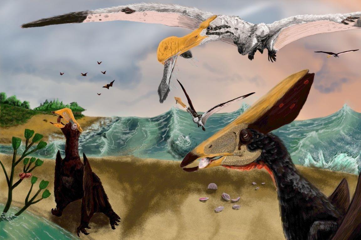 A versatilidade dos pterossauros ainda é pouco conhecida pela ciência
