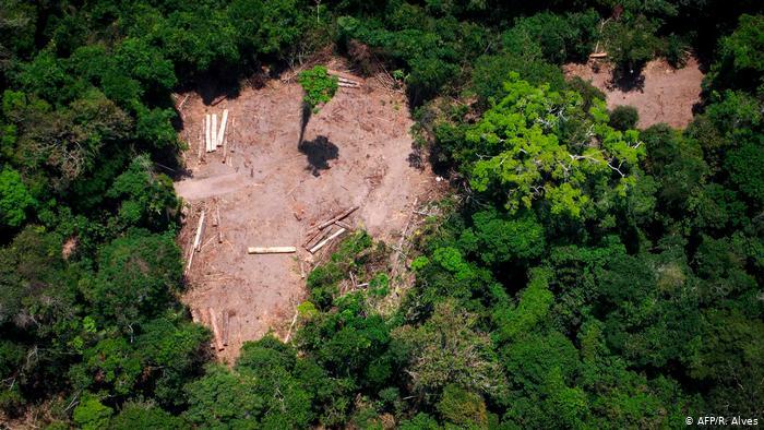 Área desmatada na Amazônia: autores do estudo criticam o que chamam de falsa dicotomia entre desenvolvimento econômico e preservação ambiental