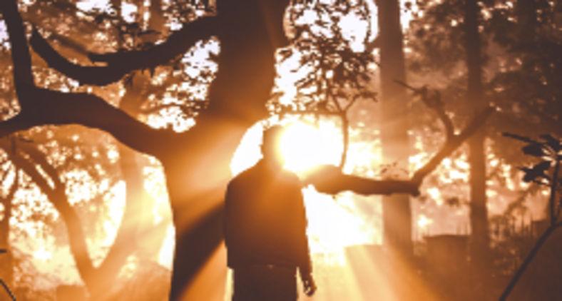 Voltar ao primeiro amor se torna realidade quando no lugar do juízo levamos a misericórdia, no lugar da condenação levamos a graça e no lugar do medo da morte levamos a alegria da vida (Dewang Gupta / Unsplash)
