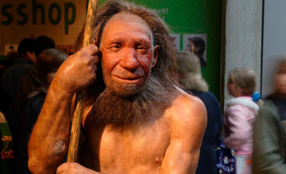 Representação de neandertal exposta em museu: linguagem sofisticada
