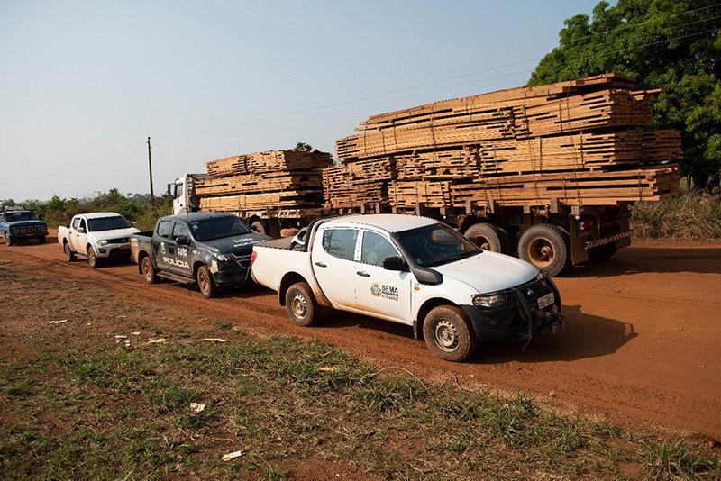 Pará e Mato Grosso ainda não aderiram ao Sistema Nacional de Controle da Origem dos Produtos Florestais (Sinaflor)