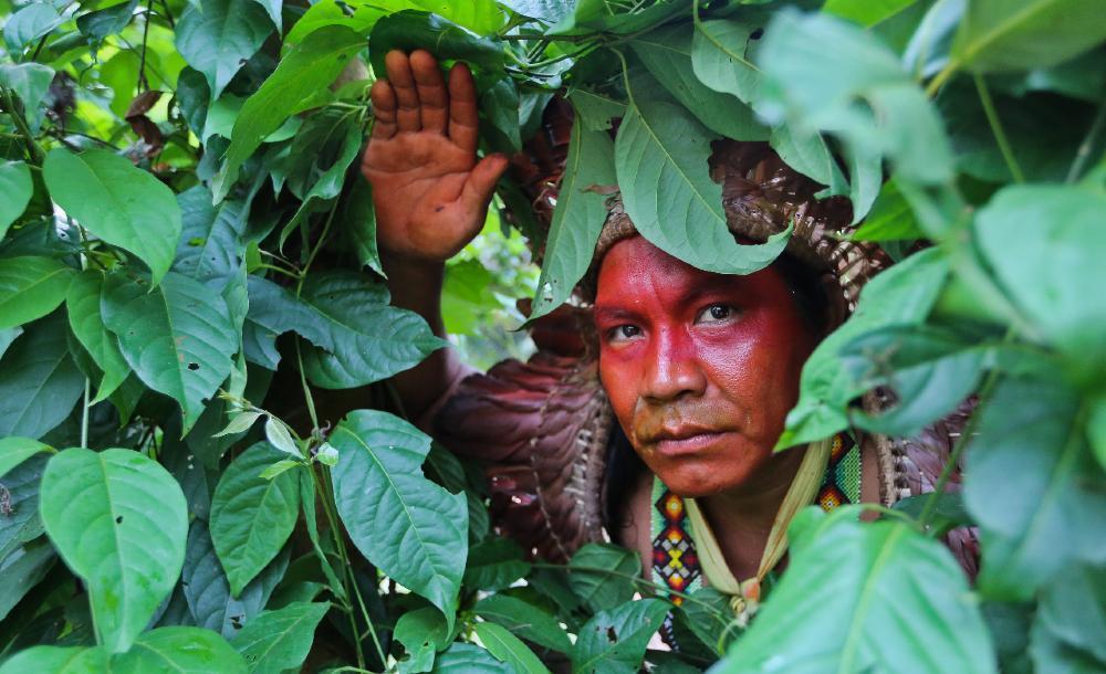 'Não é possível implementar medidas de proteção ambiental sem levar em conta as necessidades econômicas dos povos indígenas para que continuem realizando seu trabalho enquanto guardiões da floresta'
