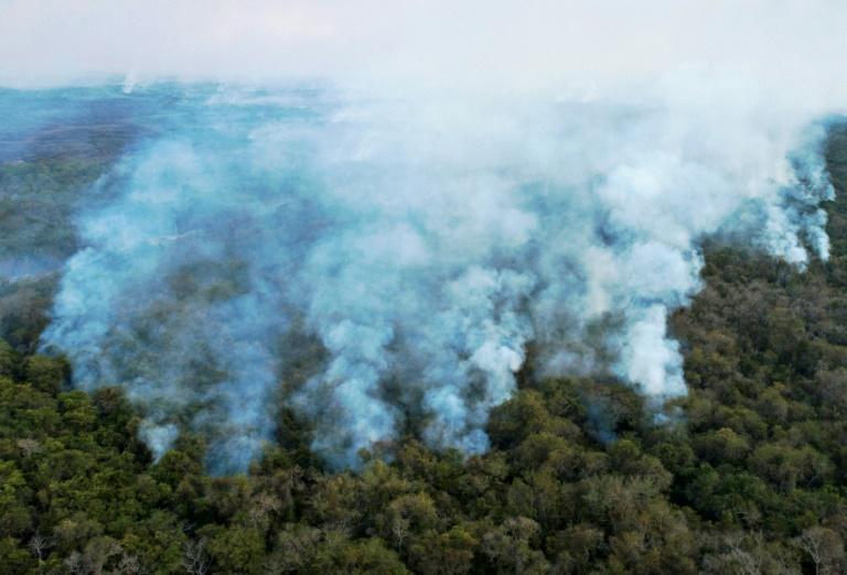 Os incêndios afetaram consideravelmente o Pantanal em 2020