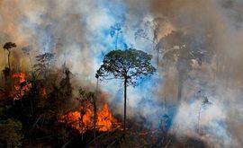 """?O Brasil só vai receber apoio e parcerias externas por esforços de mitigação como contrapartida a avanços efetivos na agenda climática"""" (Carl de Souza/AFP)"""