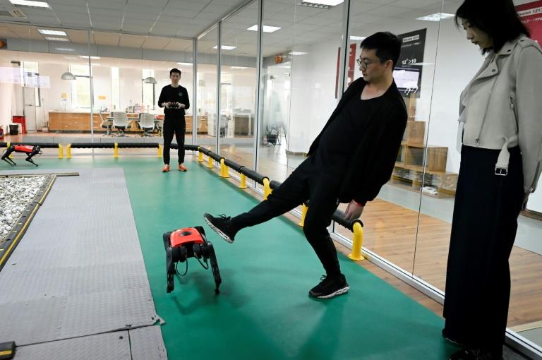 Un employé de la société de technologie Weilan commande  un robochien le 2 avril 2021 dans l'atelier de l'entreprise à Nankin