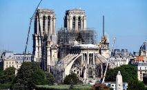 Cerca de dois mil carvalhos serão usados para reconstruir a estrutura do telhado e o pináculo da catedral (AFP)