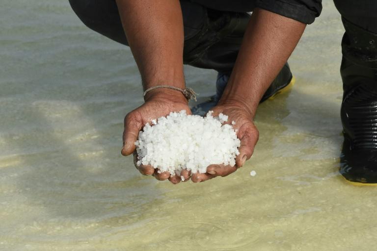 Um trabalhador mostra cristais de sal em uma salina na região de Pequeno Rann de Kutch perto da vila de Kharaghoda, a cerca de 150 km de Ahmedabad, na Índia, em 8 de janeiro de 2021