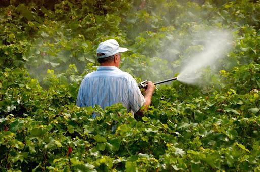 No Brasil, são registradas, em média, cerca de 15 intoxicações agudas diárias por agrotóxicos